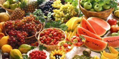 protein-from-plants-vegan-diet