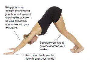 downward-facing-dog-standing-postures-in-hatha-yoga-f2