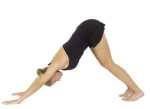 downward-facing-dog-standing-postures-in-hatha-yoga-f4