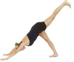downward-facing-dog-standing-postures-in-hatha-yoga-f5