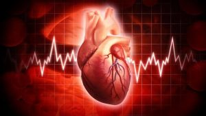 understanding-heart-rate-assessments-cardio-fitness-education