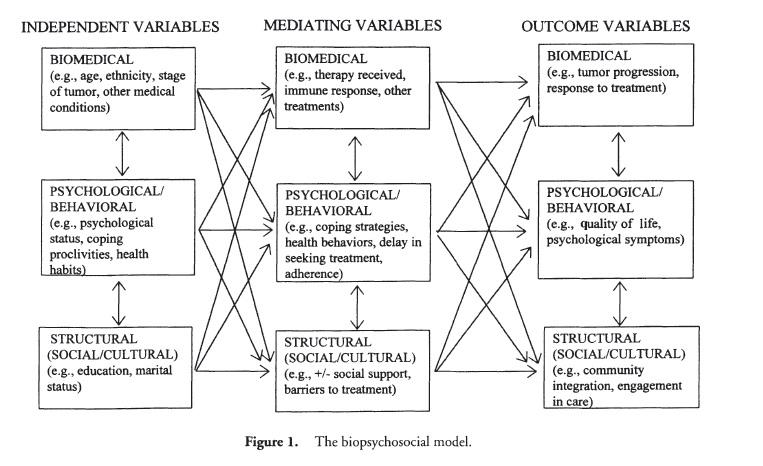 Biopsychosocial model health psychology lifestyle biopsychosocial model f1 ccuart Gallery