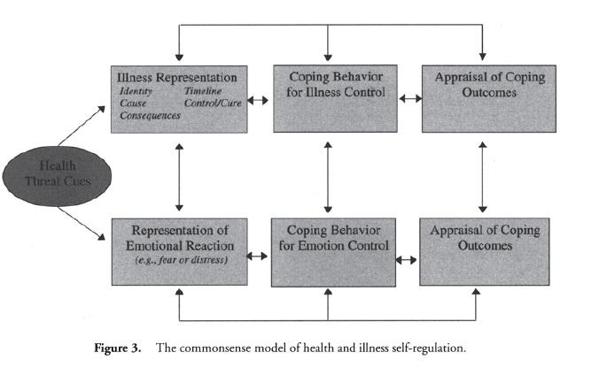 Self-Regulation f3