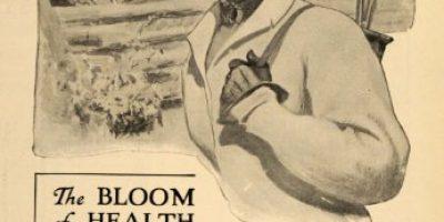 1910 Ad Malt Nutrine Healthy Food Saazer Hops Tonic Art - Original Print Ad